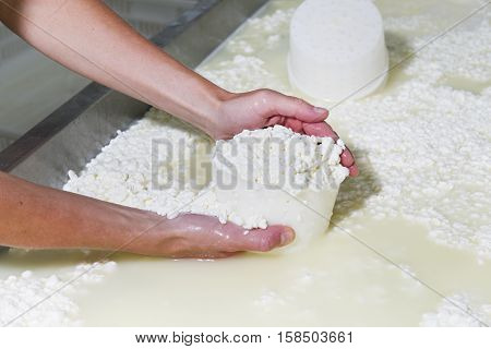 Cheesemaker Pours Cheese Just Curdled
