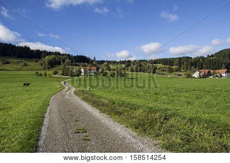 Allgau  / Allgau Bavaria (Germany) Rural landscape.