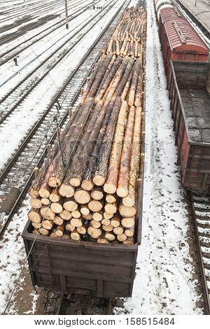 Freight wagons with logs on the railroad in winter.