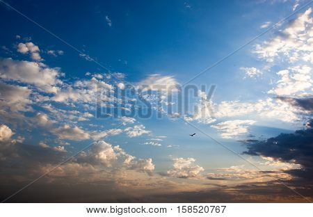 Beautiful sky with lots of clouds and flying bird