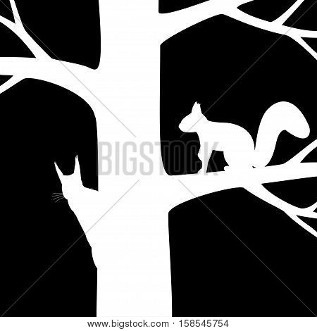 Vector illustration the silhouette two squirrel on the tree.