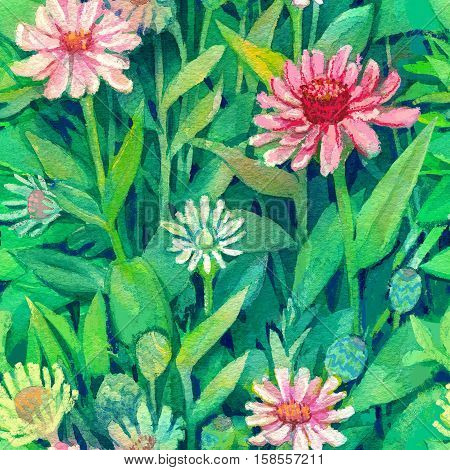 Freehand painted pink echinacea flowers blooming in the garden
