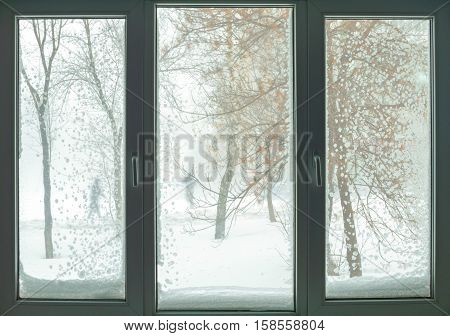 Window in russian flat with snow blizzard and trees. Siberian snowstorm