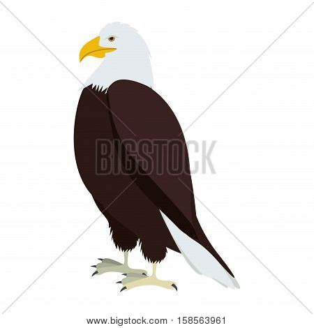 silhouette eagle in standing position vector illustration