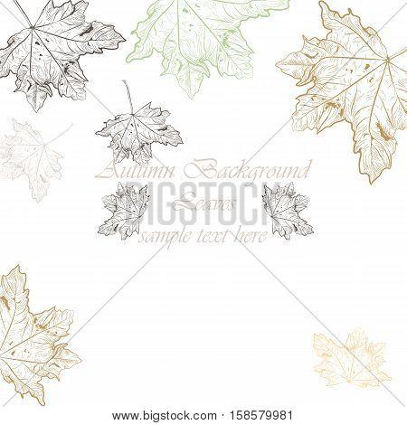 Autumn Vintage background. Vector hand drawn autumn tree leaves pattern. Retro engraved technique