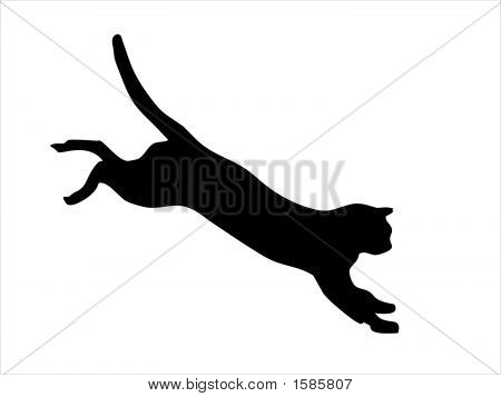Wild Cat Jumping.Eps