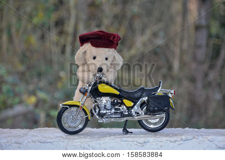 Dog soft toy with cap stands behind a motorcycle outside