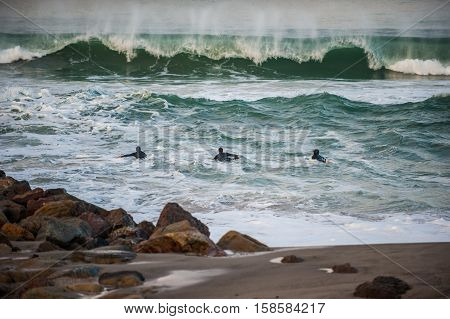 Three surfers paddling out into big wind blown waves at dawn.