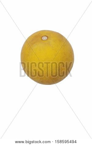 Trifoliate citrus (Poncirus trifoliata). Called Japanese bitter orange Hardy orange and Chinese bitter orange also. Image of fruit isolated on white background