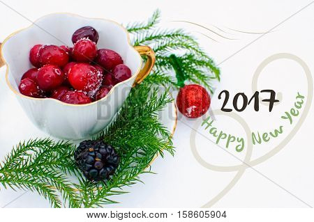 Happy New Year 2017 Card with Room for Copy Space a vintage tea cup with gold filled with healthy organic cranberry on a bed of Christmas fir tree branches in the falling snow. Winter holiday new year's wishes symbolic of good health and relaxing healthy