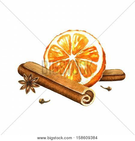 Slice of orange cinnamon and star anise. Watercolor illustration on a white background