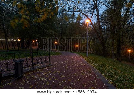 Twilight in the park and street lights with star filter effect. Park near Yauza river in Babushkinskiy district Moscow.
