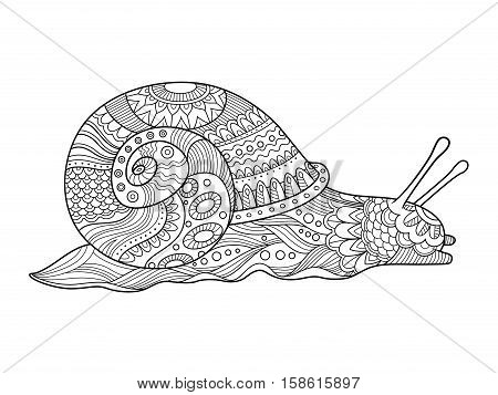 Snail coloring book for adults vector illustration. Anti-stress coloring for adult. Tattoo stencil. Zentangle style. Black and white lines. Lace pattern