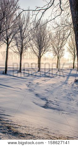 Great nice cozy winter landscape in the Netherlands along old seawall snow ice and fog