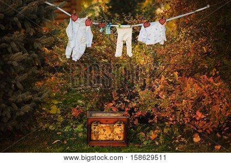 Baby's clothes are hanging and drying on a clothesline outdoor in sunny autumn day. Pins dryer. Near is wood chest.