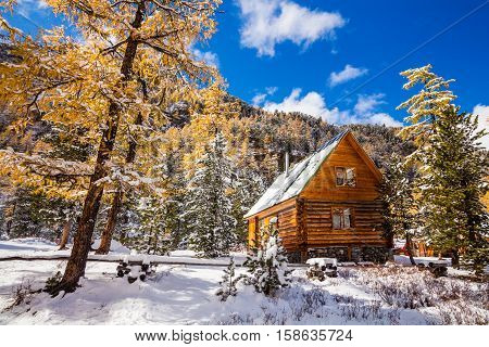 Hut under snow in winter forest in the mountains