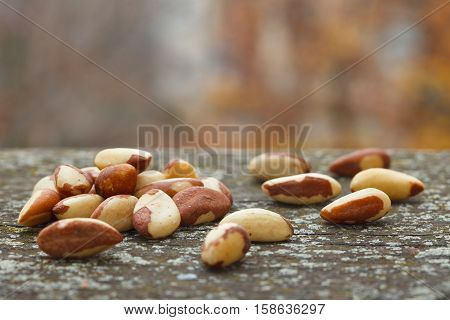 Brazil nuts on rustic wooden background. Bertholletia excelsa. Healthy food.