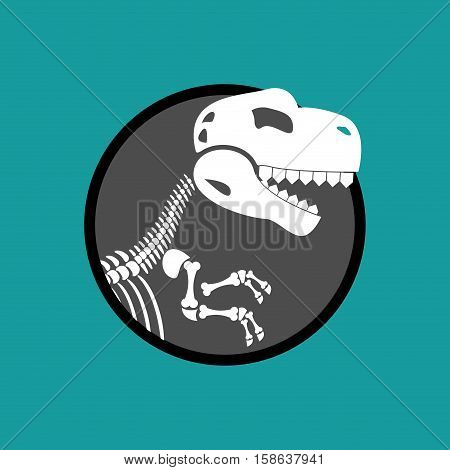 Dinosaur Skeleton Isolated. Remains Of Tyrannosaurus. Skull T-rex. Prehistoric Monster. Ancient Rept