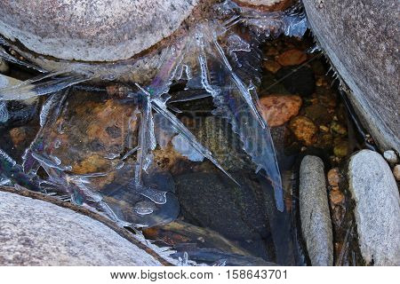 Shards of ice with iridescent sheen grow on river rocks.