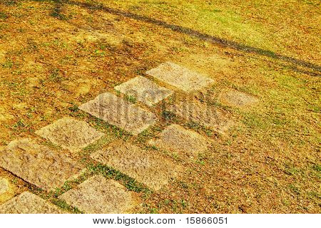pavement on grass that ends halfway