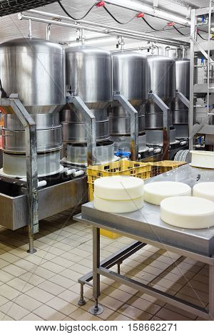 Evillers France - August 31 2016: Process of putting Gruyere de Comte Cheese in the forms at the dairy in Franche Comte Burgundy in France.