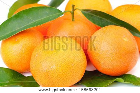 Mandarins Tangerines Closeup. Fresh mandarin on the isolated white background.
