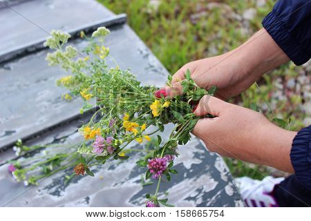 Young woman weaves a wreath of wildflowers.