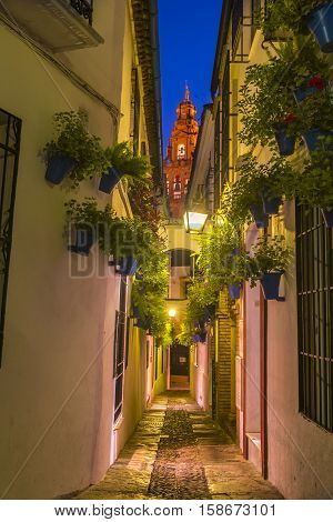 Calleja de las Flores, one of the most popular and tourist streets of Cordoba city near the Great Mosque in Andalusia, Spain