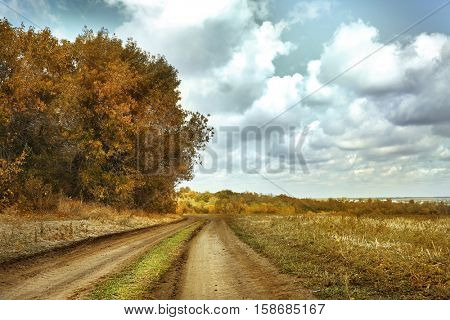 Lonely road on field