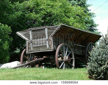 An abandoned grain trailer used for hauling farm produce,  with wooden wheels probability used with horses.