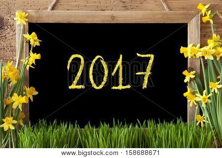 Blackboard With Text 2017 For Happy New Year Or Spring Greetings. Spring Flowers Nacissus Or Daffodil With Grass. Rustic Aged Wooden Background.