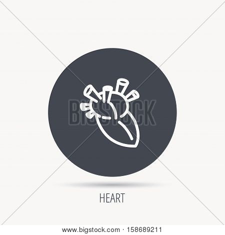 Heart icon. Human organ sign. Surgical transplantation symbol. Round web button with flat icon. Vector