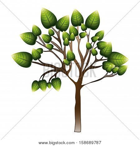 silhouette tree with leafy branches vector illustration