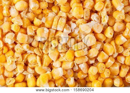 Vegetable food background healthy vegetarian natural meal. Fresh frozen corn vitamins