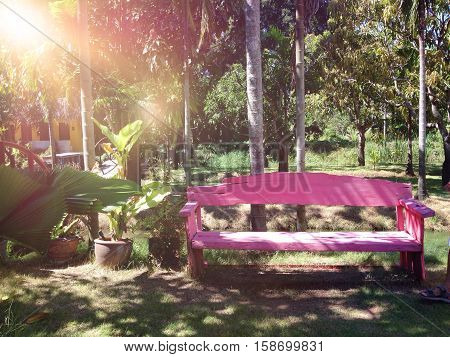 Vintage color tone concept : Empty pink wooden bench in garden, pink wooden chair  or park bench in the garden