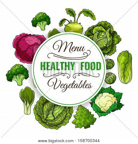 Healthy food menu. Vegetables poster. Vegan raw organic cabbage, broccoli and red cabbage, kohlrabi, chinese cabbage napa, brussels sprouts and cauliflower, pak choi and kale, leafy cabbage vegetables
