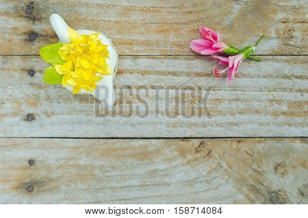 Hibiscus Flower Or Hibiscus Rosa Sinensis And Ixora Flower With Blank Text Copy Space Isolated On Wo