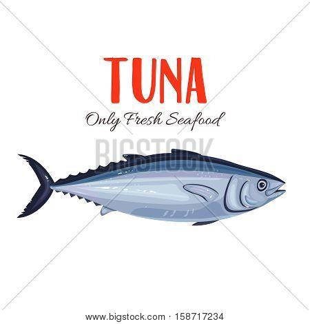 Tuna Fish vector illustration in cartoon style. Seafood product design.