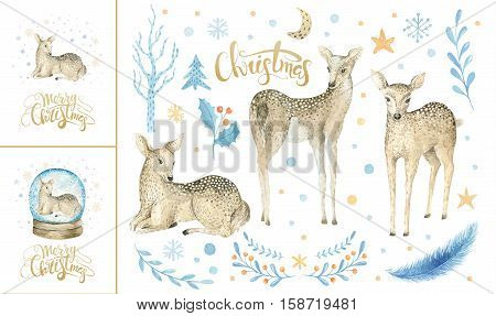 Merry christmas snowflakes and baby deer. Hand drawn fawn illustration for your design. xmas deer design elements isolated on white background.