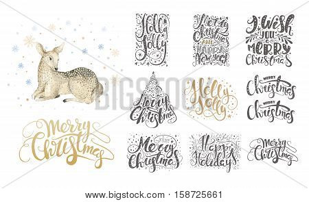 Merry christmas lettering over with snowflakes and deer. Hand drawn text calligraphy for your design. xmas fawn design overlay elements isolated on white background.