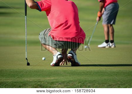 Golf player crouching and study the green before putting shot.The background playing golf preparing to shot