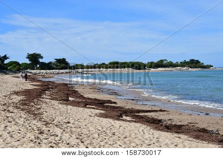 Les Portes en Re France - september 26 2016 : the Trousse Chemise beach