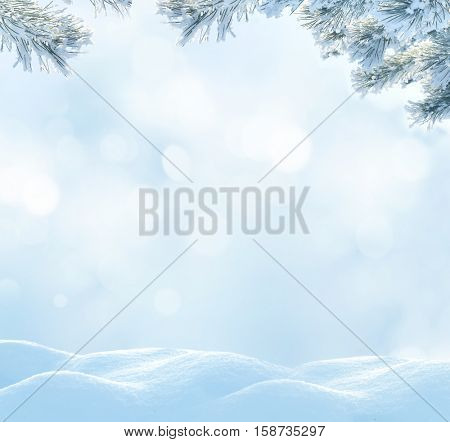 Christmas background with fir tree branch.Winter landscape