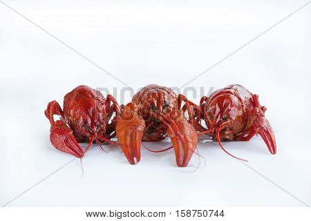 Three Boiled Crayfishes With Claws Isolated On White Background