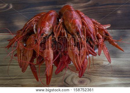 Plate Of Crayfishes On Wooden Background
