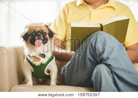 Man reading a book when his dog sitting beside