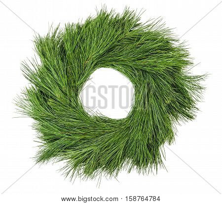Traditional green christmas decoration evergreen pine wreath undecorated isolated on white background