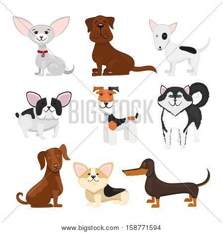 Dog breeds vector cartoon set. Set breeds pet funny puppy illustration