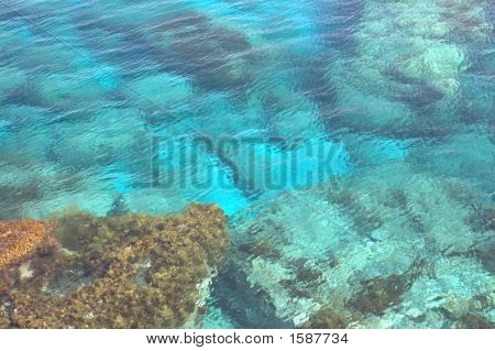Sea Bottom In Cyprus
