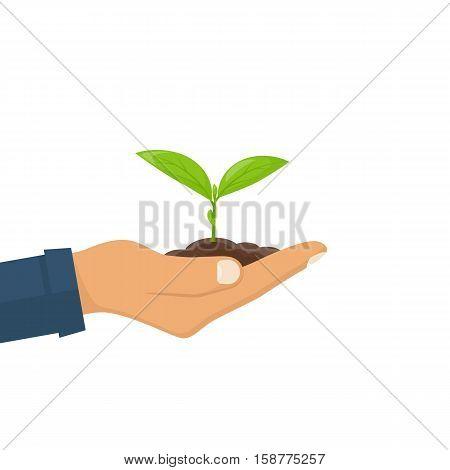 Planting Sapling. Vector